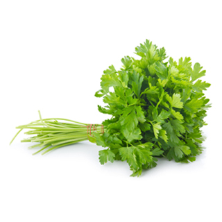 Continental Parsley